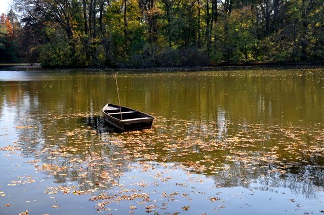 DSC_boat2758